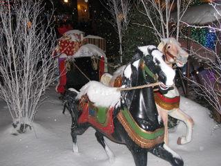 December 2008 083