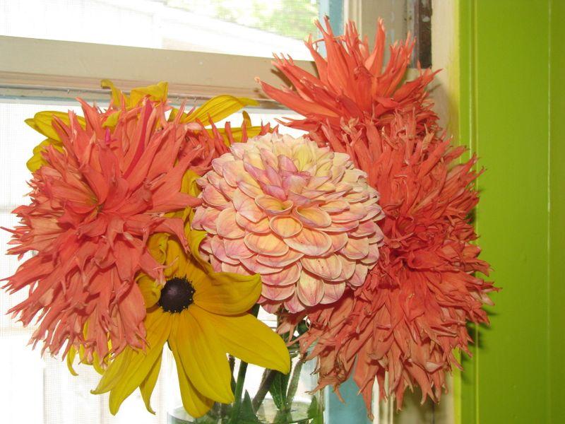 Rachael's flowers 018