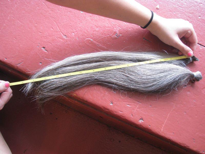 Locks of Love Haircut 007