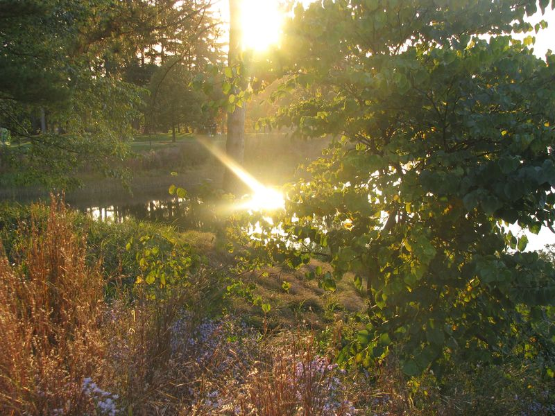 Arboretum October 2010 155