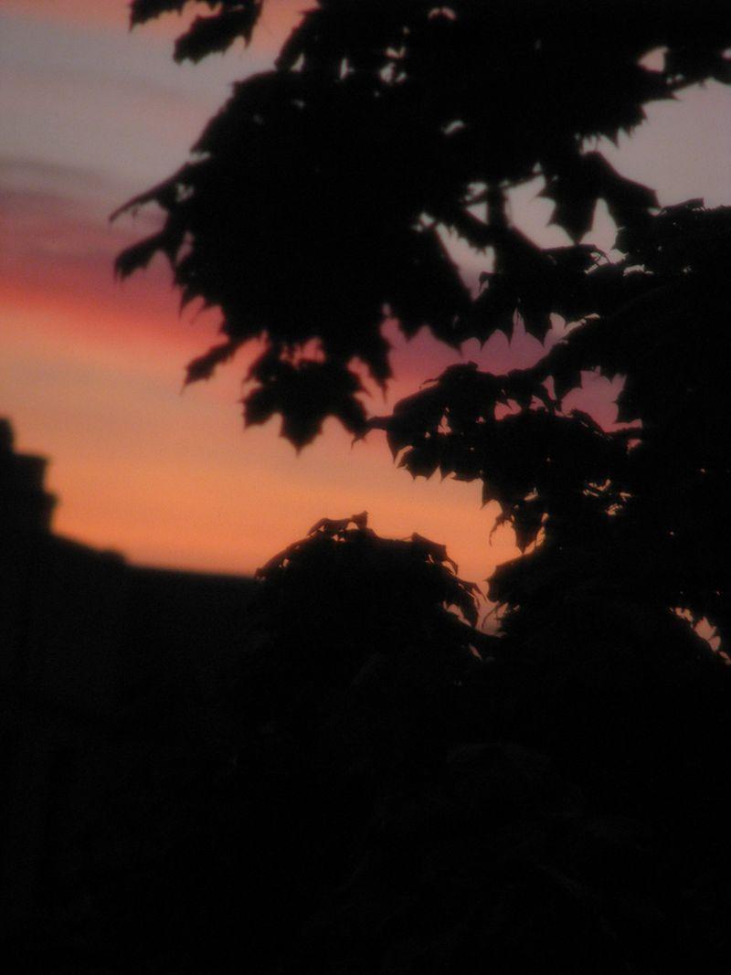 Sunrise 07-22-10 011