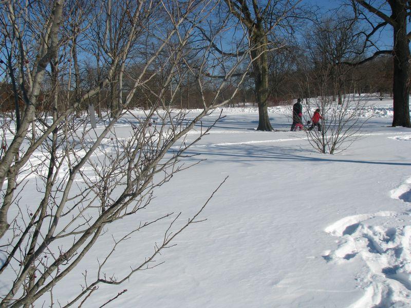 Snowshoeing 016