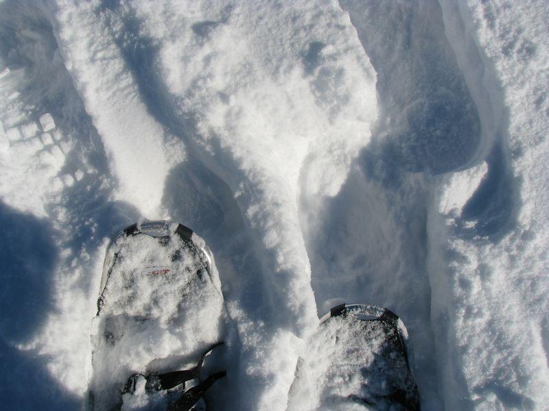Snowshoeing 015