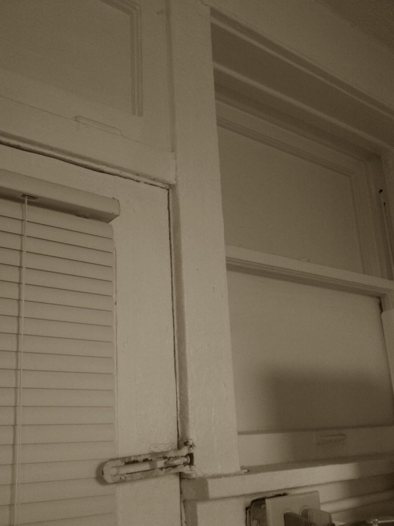 Sepia days back door