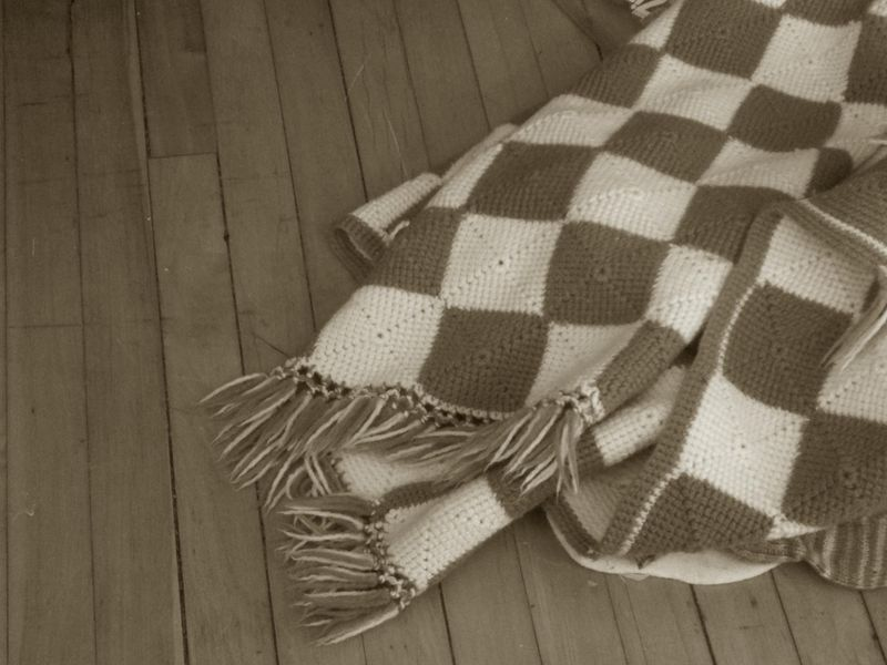Sepia days blue checkered blanket