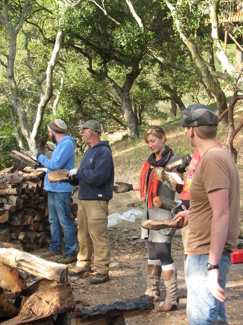 Woodchopping 112