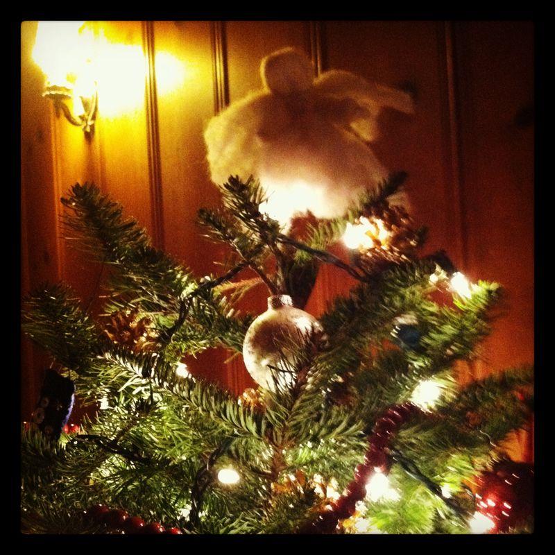 Christmas tree 2012 005