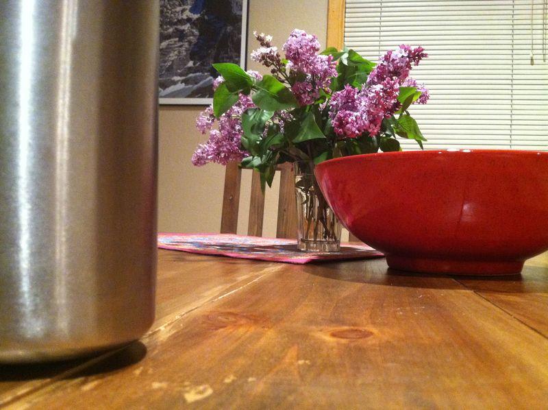Lilacs 004