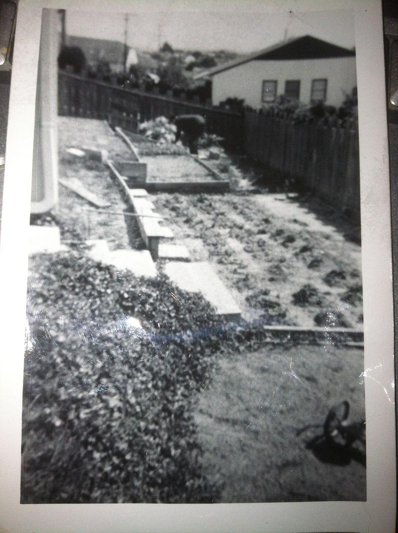 Dad in garden 001