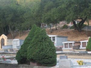 Cemetery_004