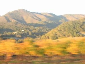 Sonoma_valley_sonogram_009